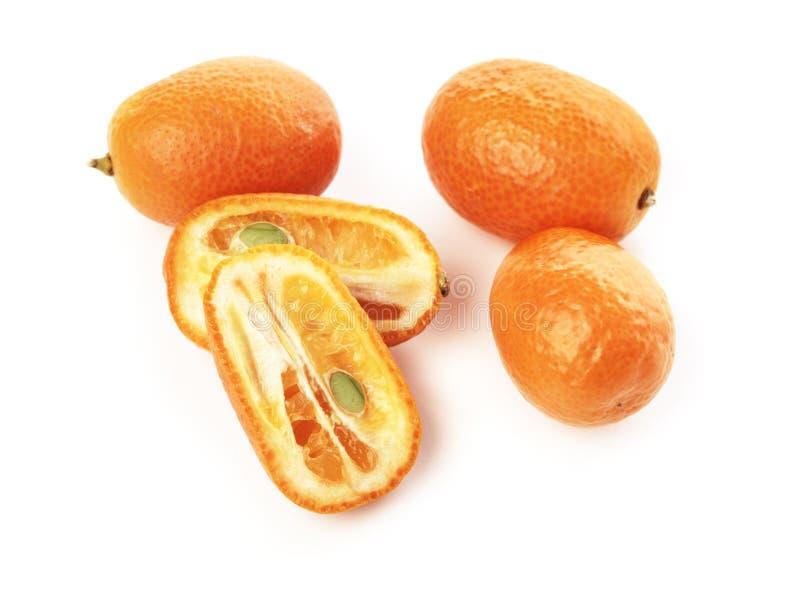 kumquat zdjęcia royalty free