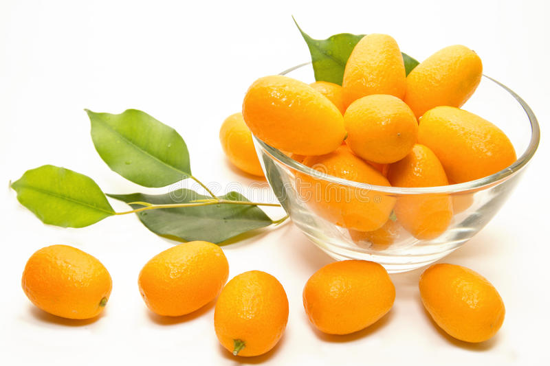 Kumquat foto de stock