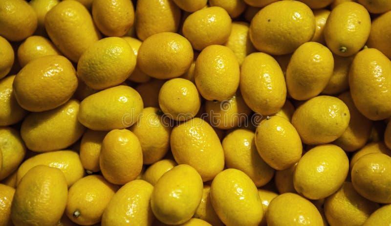 kumquat stock afbeelding