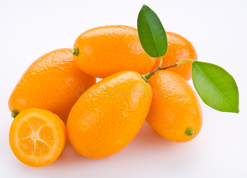 kumquat image stock