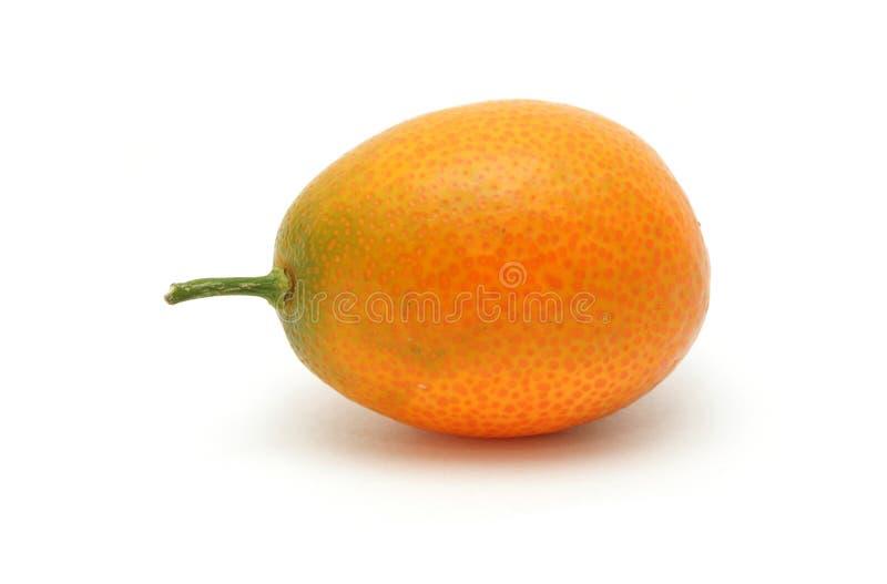 Kumquat imagen de archivo