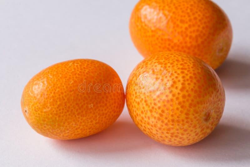 kumquat imagem de stock