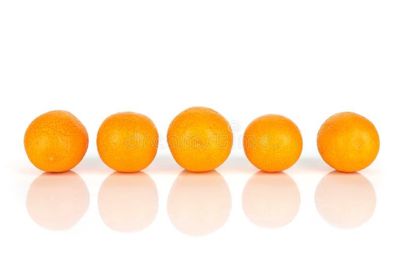 Kumquat alaranjado fresco isolado no branco fotografia de stock