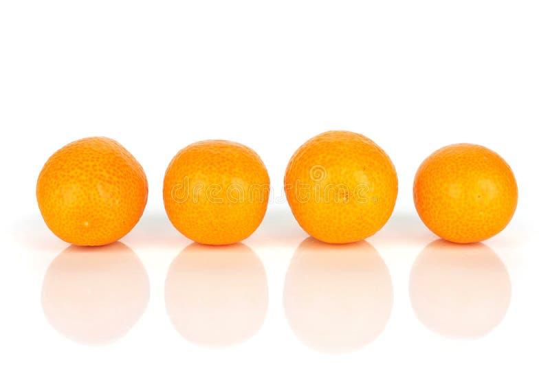 Kumquat alaranjado fresco isolado no branco fotos de stock royalty free