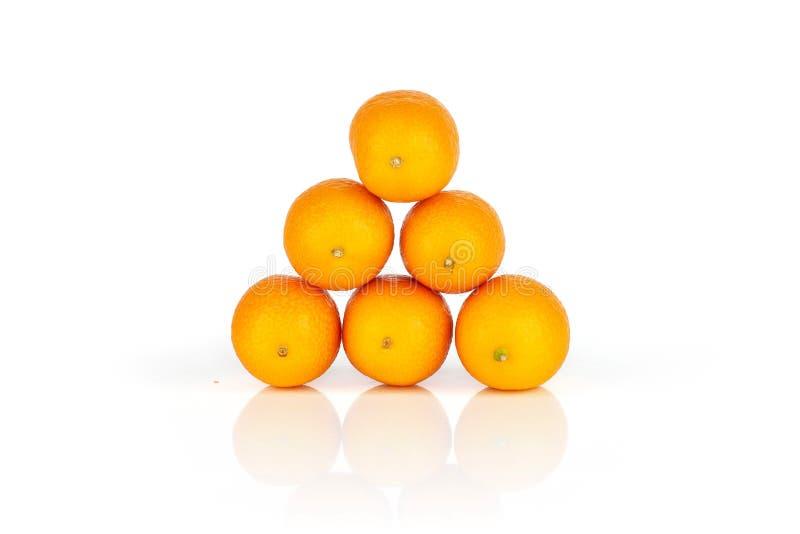 Kumquat alaranjado fresco isolado no branco fotos de stock