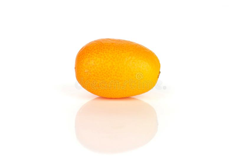 Kumquat alaranjado fresco isolado no branco imagens de stock
