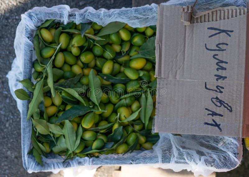 Kumquat in box for sale stock photos