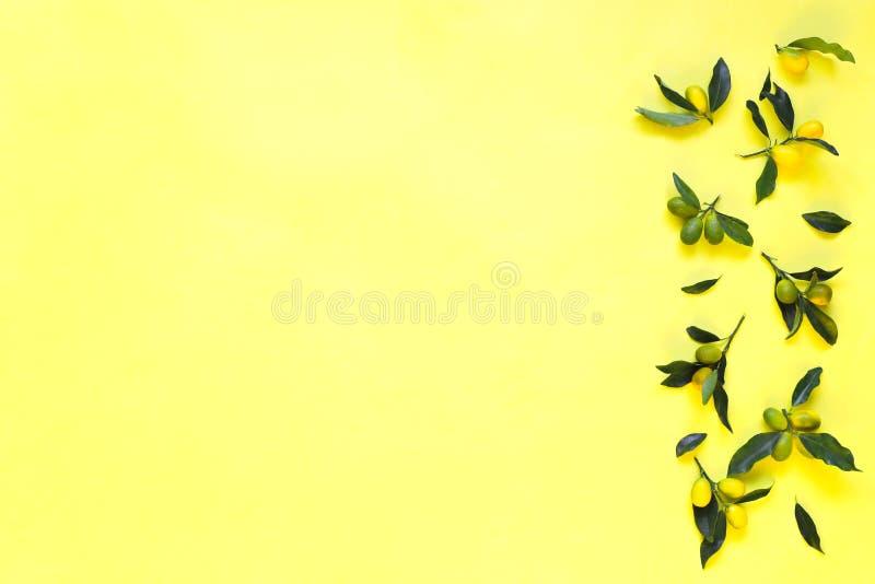 Kumquat com as folhas no fundo amarelo Vista superior, Copyspace foto de stock