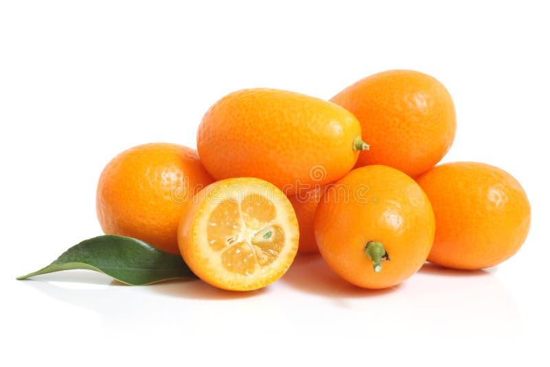 Kumquat com folha imagens de stock royalty free