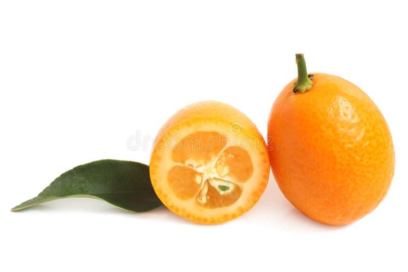 Kumquat com folha foto de stock royalty free