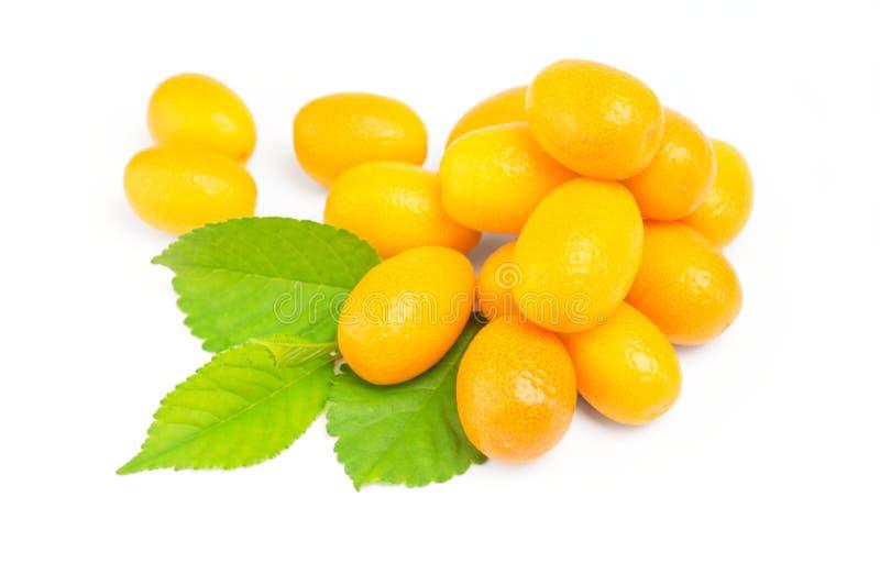 Kumquat com folha em um fundo branco imagens de stock