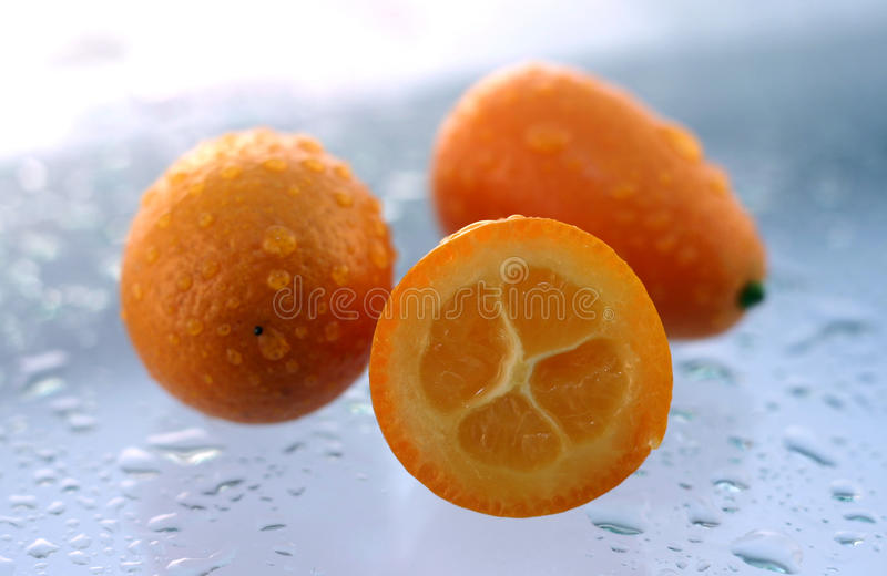 Kumquat frais photos stock