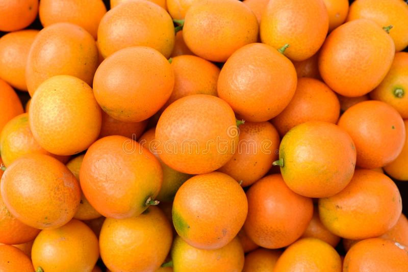 Kumquat fresco imagem de stock royalty free
