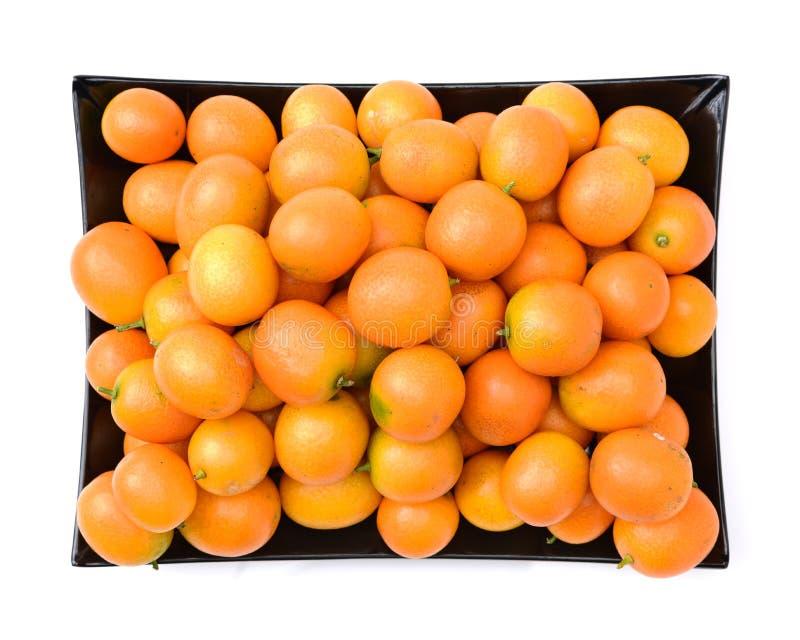 Kumquat isolado foto de stock royalty free