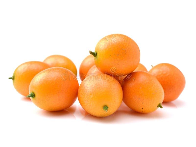 Kumquat isolado fotos de stock