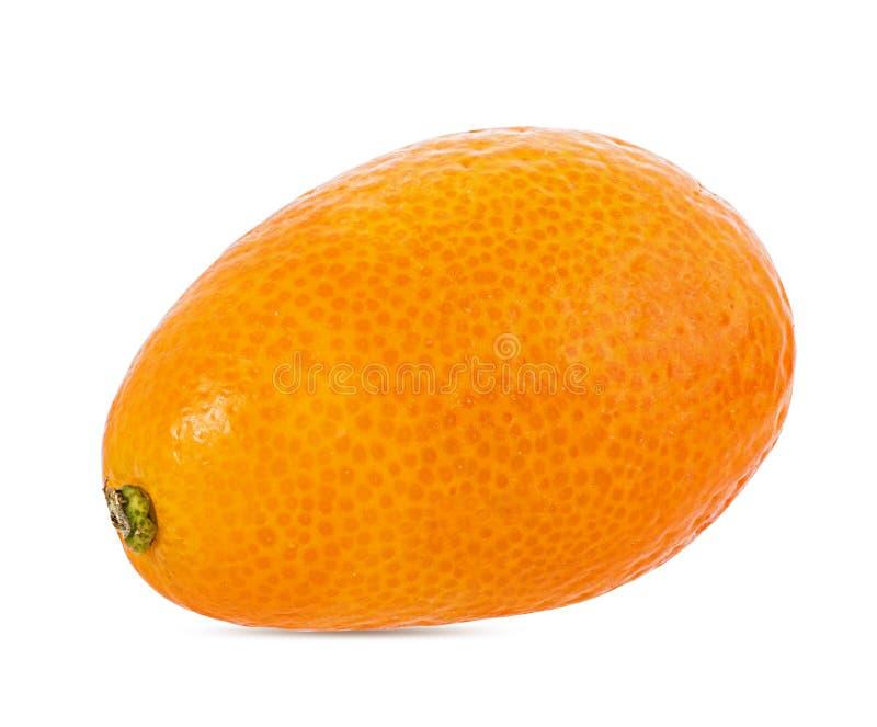 Kumquat isolado no branco imagens de stock
