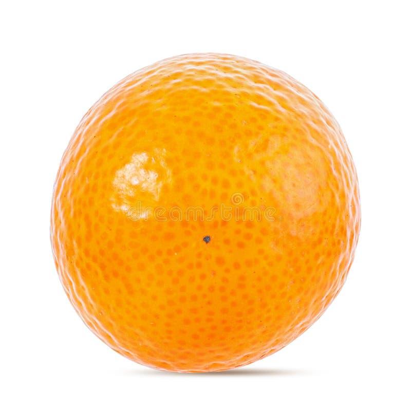 Kumquat isolado no branco fotografia de stock royalty free