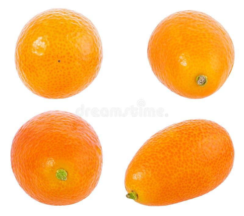 Kumquat isolado no branco imagem de stock royalty free