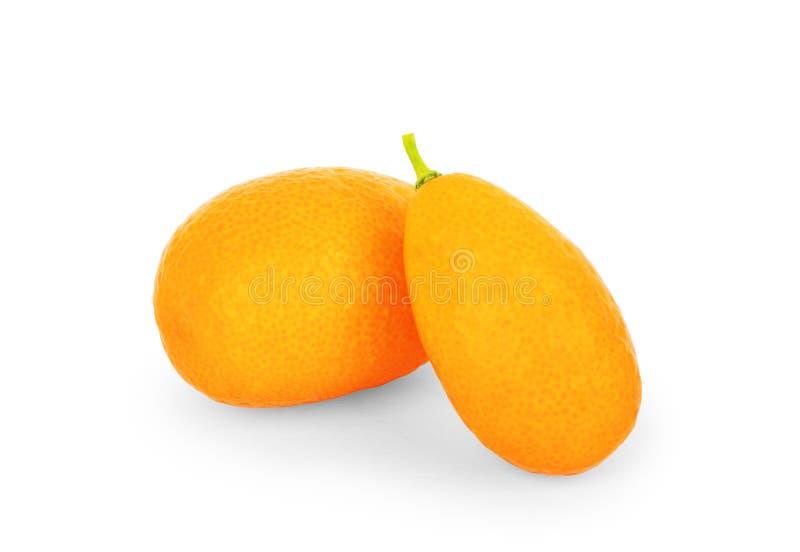 Kumquat isolado no fundo branco fotos de stock royalty free