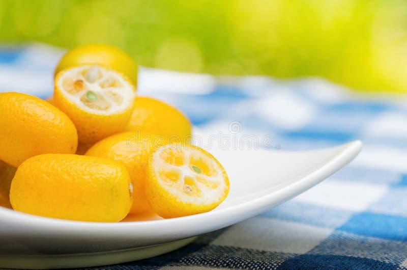 Kumquat jaune image libre de droits