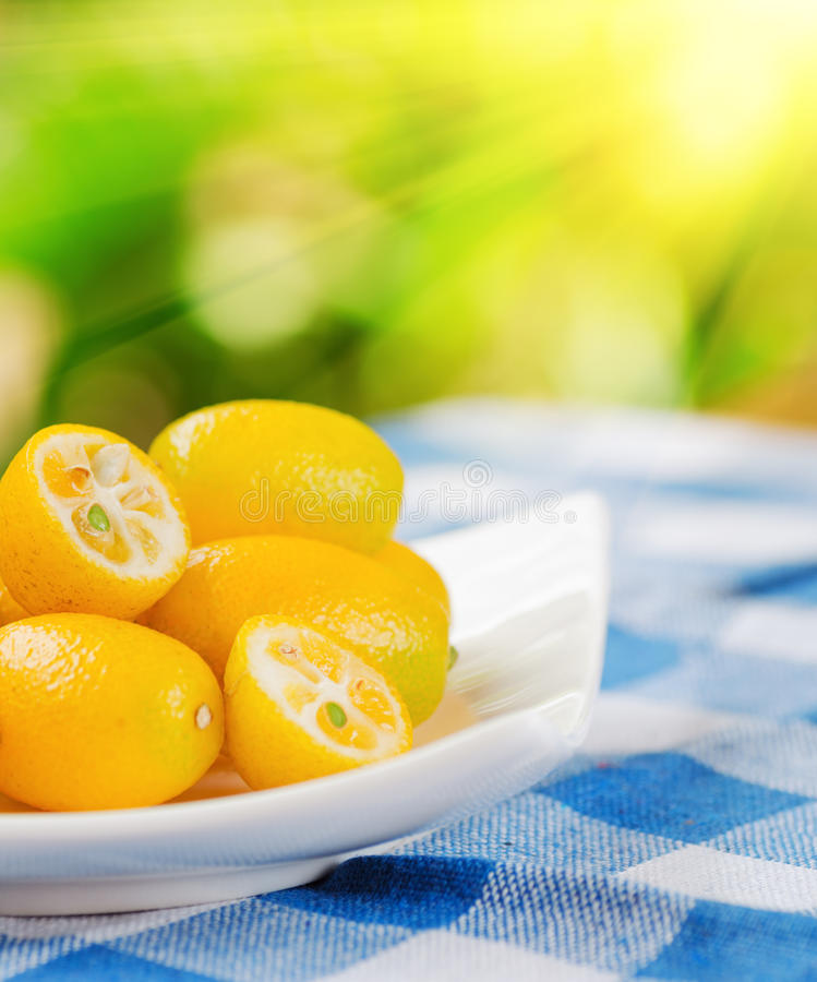 Kumquat jaune sur le fond de nature photo stock