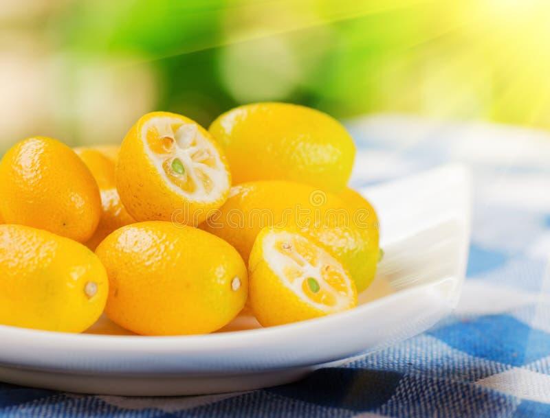 Kumquat jaune sur le fond de nature image libre de droits
