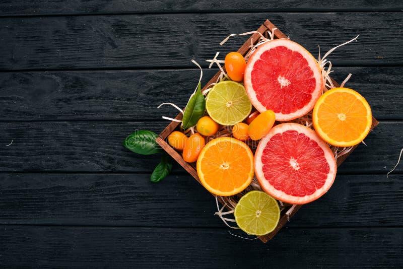 Kumquat, laranja e toranja Frutas tropicais frescas fotografia de stock royalty free