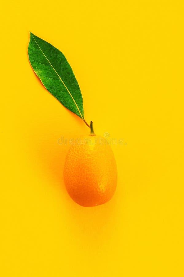 Kumquat maduro fresco com a folha verde no fundo amarelo imagens de stock