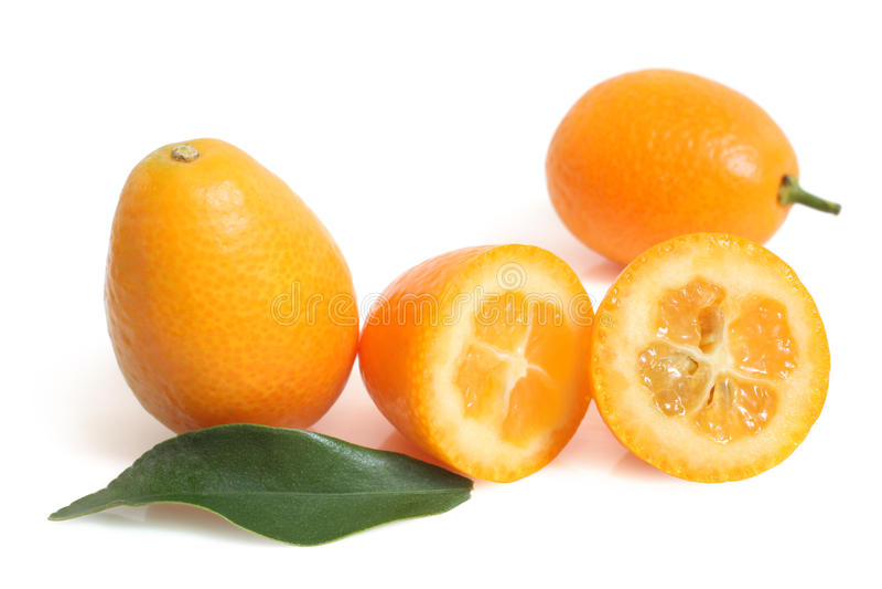 Kumquat med leafen arkivbilder