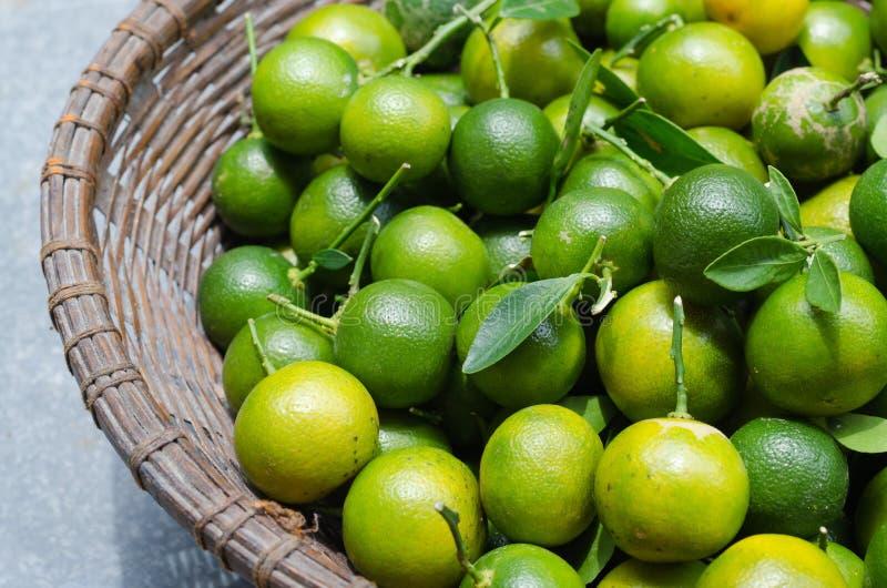 Kumquat verde na cesta fotografia de stock royalty free