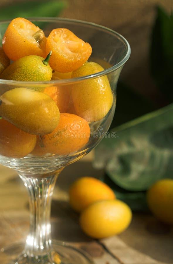 Kumquats stock fotografie