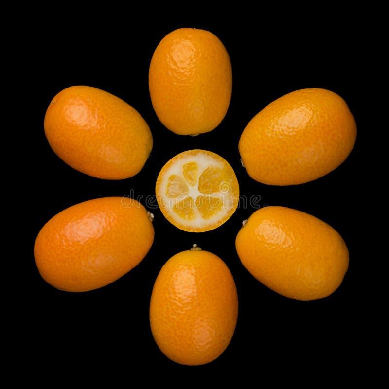 Kumquats ovais que formam um símbolo de Sun no fundo preto fotos de stock