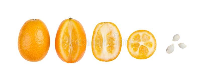 Kumquats ovales avec des graines dans une rangée d'isolement sur le blanc image stock