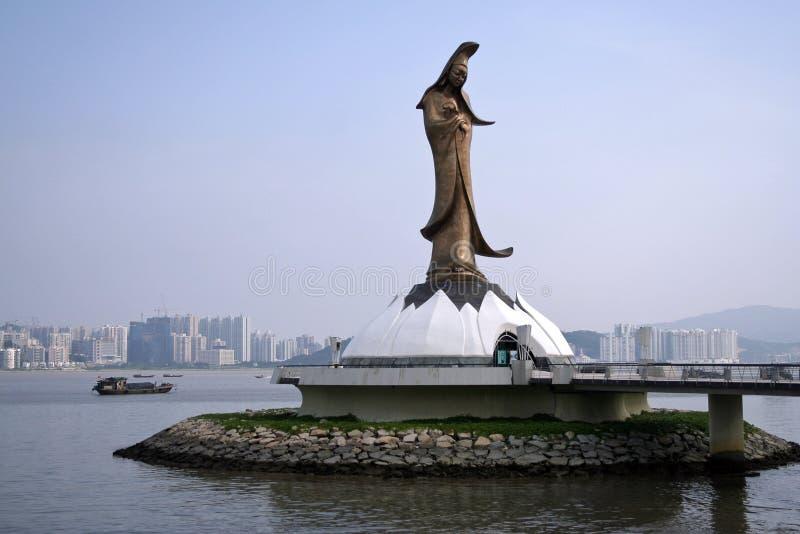 - Kun Macau zdjęcia stock