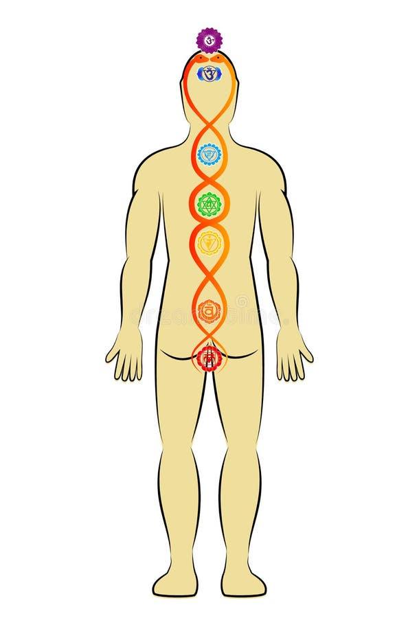 Kundalini energi royaltyfri illustrationer