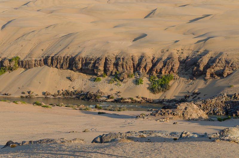 Kunene River in front of towering ancient Namib Desert sand dunes of Namibia and Angola. With sparse vegetation royalty free stock photography