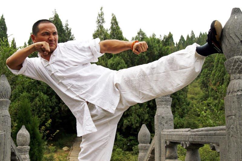 Kung chinês Fu imagens de stock royalty free