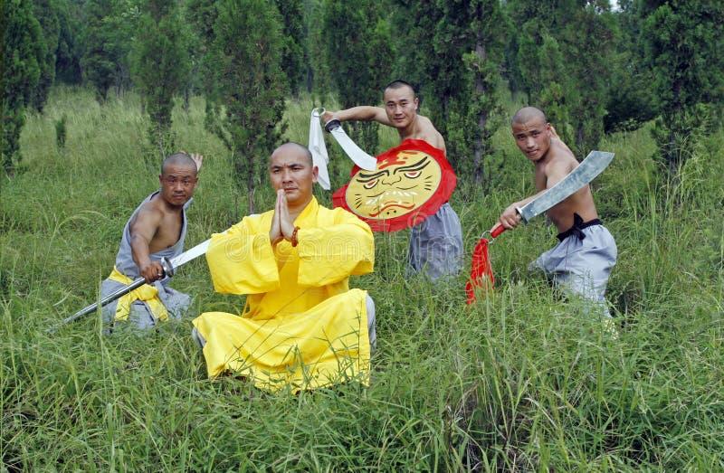Kung chinês Fu imagem de stock royalty free