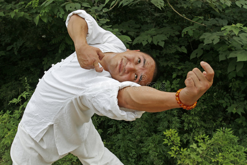 Kung Chino Fu Fotos de archivo