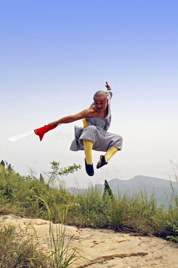Kung chino Fu fotos de archivo libres de regalías