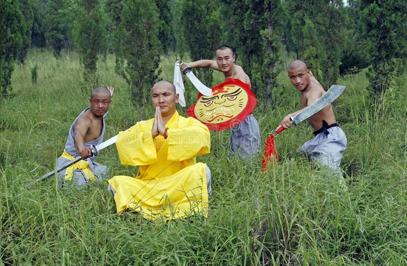 Kung chinois Fu image libre de droits
