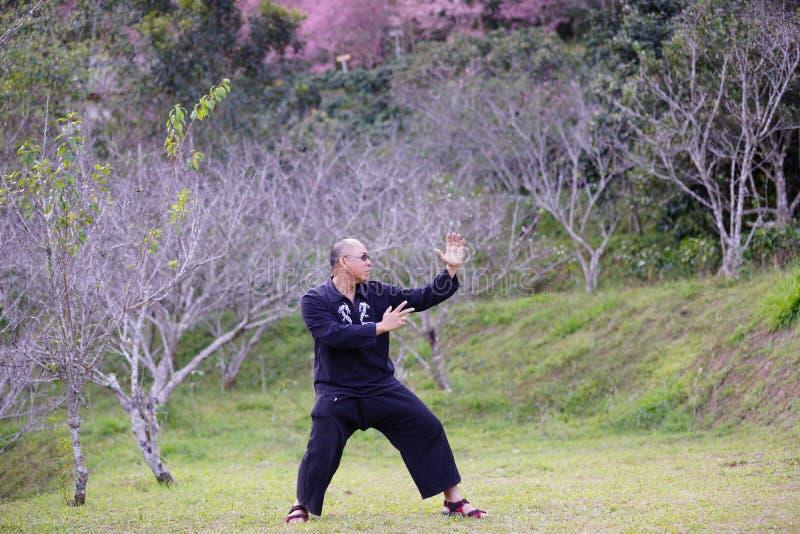 Kung fu训练 免版税库存图片