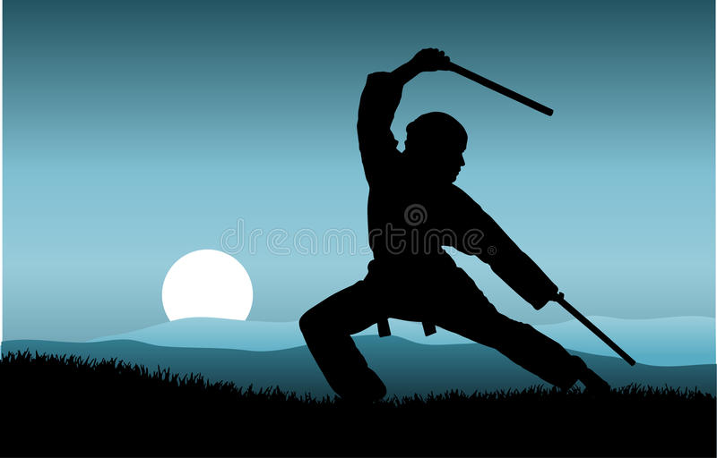 Kung fu royalty free stock images