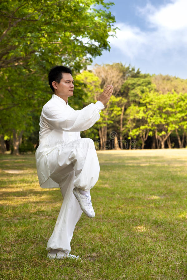 Download Kung fu stock image. Image of meditation, mind, grass - 24642477