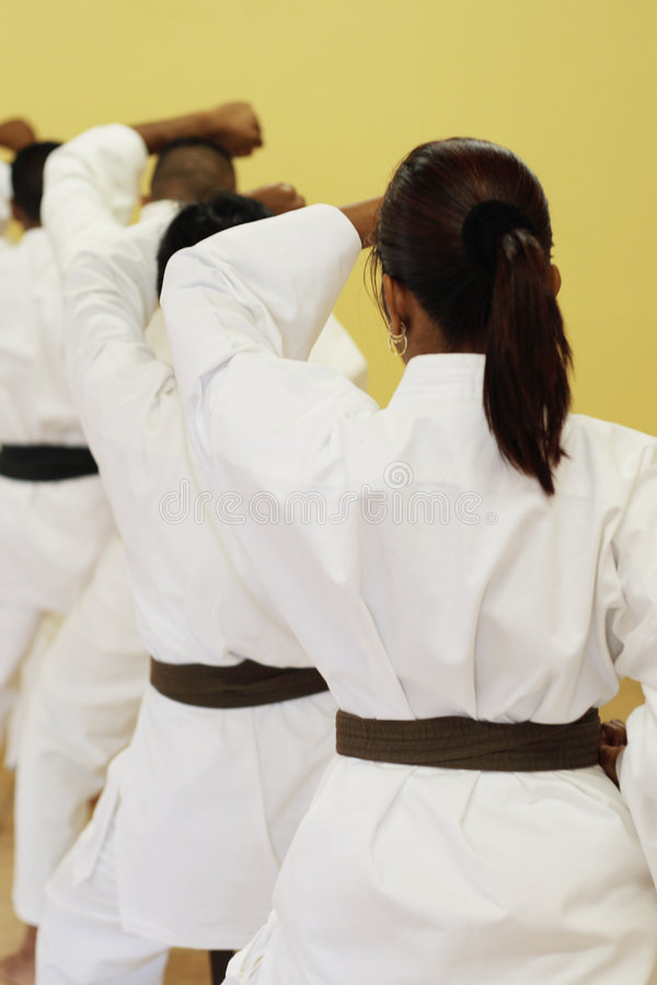 Kung fu royalty free stock photos