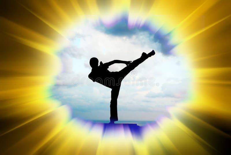Kung fu Abbildung lizenzfreie abbildung