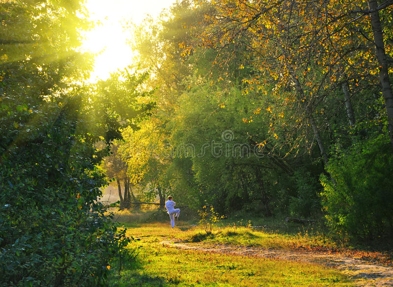 Download Kung Fu Athlete In The Forest Stock Photo - Image: 11304646