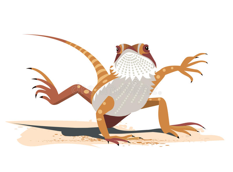 Kung Fu of the Bearded Dragon. Pogona vitticeps royalty free illustration