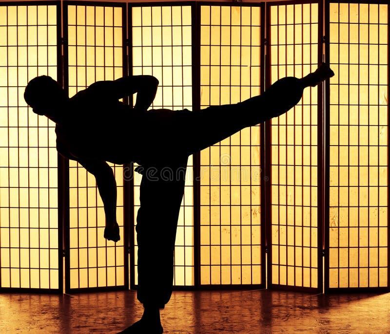 Kung fu kopnięcie obrazy royalty free