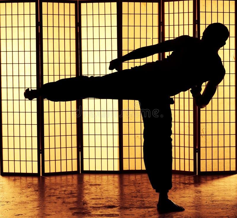 Kung fu kopnięcie obraz stock